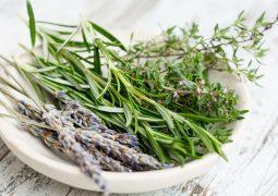 leczenie ziołami