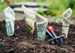 Konto bankowe i kredyty