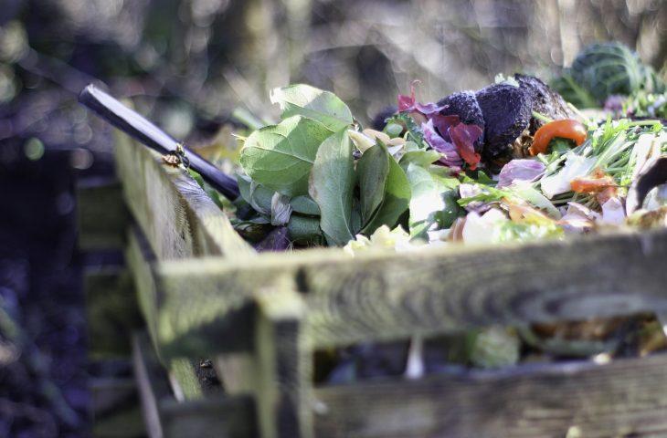 Odpady zielone